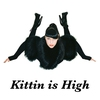 Cover of the album Kittin Is High - EP
