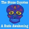 Cover of the album A Rude Awakening