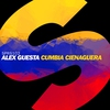 Couverture de l'album Cumbia Cienaguera - Single