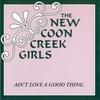 Couverture de l'album Ain't Love a Good Thing