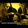 Cover of the album Object Permanence