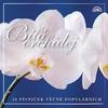 Couverture de l'album Bílá Orchidej 20 Písniček Věčně Populárních