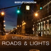 Couverture de l'album Road & Lights - Single