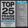 Cover of the album Top 25 Praise Songs Instrumental - 2012 Edition