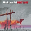 Couverture de l'album The Essential Meat Loaf