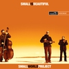 Cover of the album Small is Beautiful