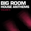 Cover of the album Big Room House Anthems, Vol. 5