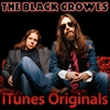 Couverture de l'album iTunes Originals: The Black Crowes