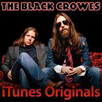 Couverture du titre iTunes Originals: The Black Crowes