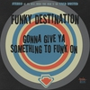 Couverture de l'album Gonna Give Ya Something To Funk On - EP