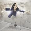 Cover of the album Settler
