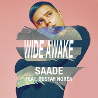 Cover of the track Wide Awake (feat. Gustaf Norén) - Single
