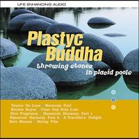 Couverture du titre Throwing Stones in Placid Pools