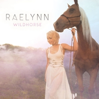 Cover of the track WildHorse