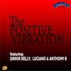 Cover of the album Positive Vibration
