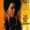Couverture de l'album The Iron Pot Cooker