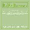 Couverture de l'album RaRe Elements - Ustad Sultan Khan Remixes