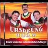 Cover of the album Unsere schönsten volkstümlichen Schlager