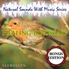 Cover of the album Healing Birdsong: Bonus Edition: Natural Sounds with Music Series
