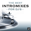 Couverture de l'album The Best Intro Mixes - For DJ's, Vol. 2
