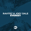 Cover of the track Everest