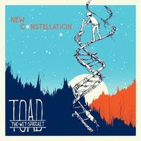 Couverture du titre New Constellation