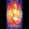 Couverture de l'album Winterland (Live)