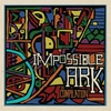 Couverture de l'album Impossible Ark: A Compilation