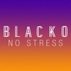 Cover of the track No Stress
