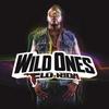 Couverture du titre Wild Ones