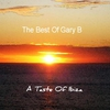 Cover of the album A Taste of Ibiza: The Best of Gary B