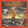 Couverture de l'album Iron Age