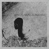 Couverture de l'album Nocturnal Sunshine