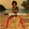 Couverture de l'album Exile African