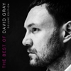 Cover of the album The Best of David Gray (Deluxe Edition)