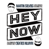 Couverture du titre Hey Now