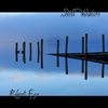 Cover of the album Still Waters