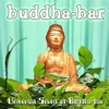 Cover of the album Universal Sound Of Buddha Bar
