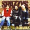 Couverture de l'album Aloha! Go Bananas