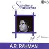Couverture de l'album Signature Collection A.R. Rahman
