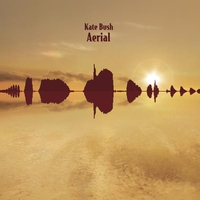 Cover of the track Aerial