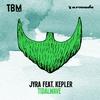 Couverture de l'album Tidalwave (feat. Kepler) - Single