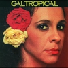 Cover of the album Gal tropical