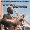Couverture de l'album Muddy Waters At Newport 1960 (Live)