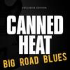 Couverture de l'album Big Road Blues