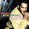 Couverture de l'album G-Spot