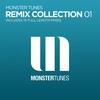 Couverture de l'album Monster Tunes - Remix Collection 01