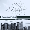 Cover of the album Natural Flow