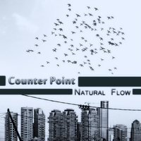 Cover of the track Natural Flow