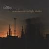 Couverture de l'album Obscure Movements in Twilight Shades